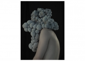 from the cycle HYBRID FIGURES 2010 in collaboration with Dorota Buczkowska // 80x90cm